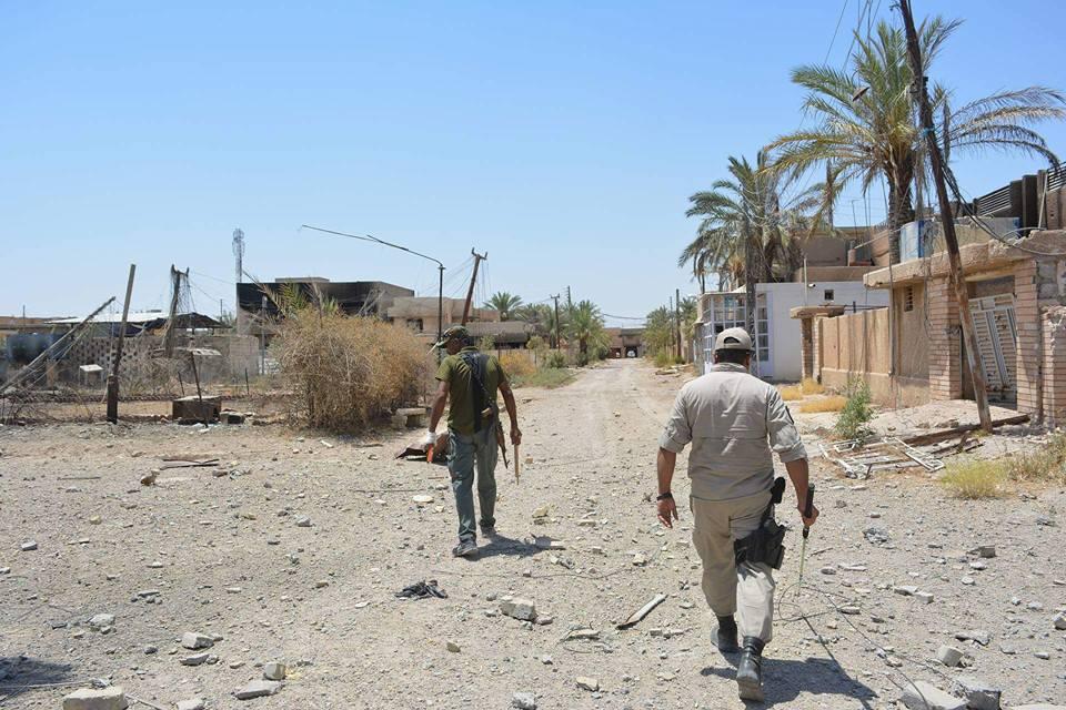 """البيلاوي يعلن المباشرة برفع جثث """"داعش"""" المتفسخة من جزيرة الخالدية"""