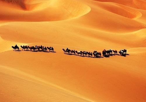 السودان.. إنقاذ 107 مهاجرا غير نظامي من الموت في الصحراء