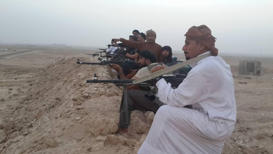عشائر عامرية الصمود: تفاجئنا بأمر نقل مقاتلينا الى قواطع صعبة دون تجهيزهم بأسلحة