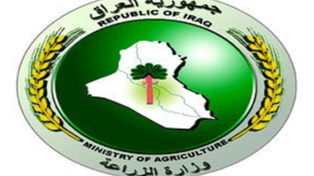 العراق يصدر خمس مواد غذائية إلى السعودية