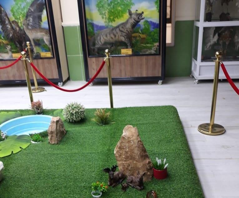 جامعة الانبار تستعد لافتتاح متحفها الطبيعي في الجامعة